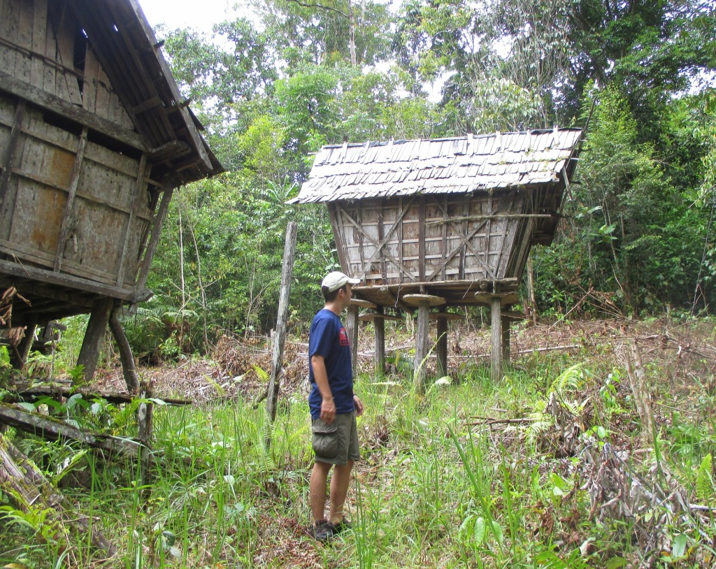 Dayak Buildings Used for Storing Rice (Jurung) (Kundangan Village, Kalimantan, Borneo, Indonesia)